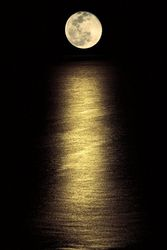 POSTER MOONLIGHT OCEAN 61 X 91.5 CM