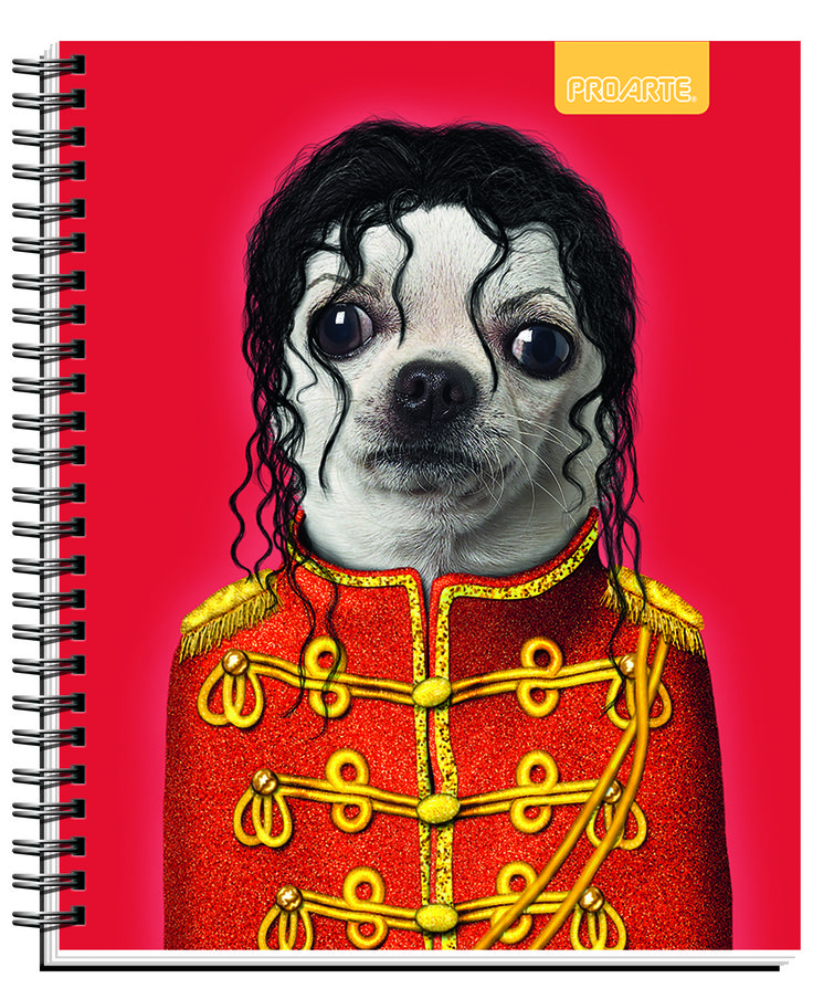 #Pets #Rocks #cuadernos #Notebooks #school #supplies Back to school #PROARTE #Jackson  Notebooks Proarte license Pets Rock 2014. This line of notebooks is known Artists, singers and actors that happen to become pets. They are very funny. Meet Pets Rocks in all the best bookstores in Chile and Wallmart and Jumbo Supermarkets.