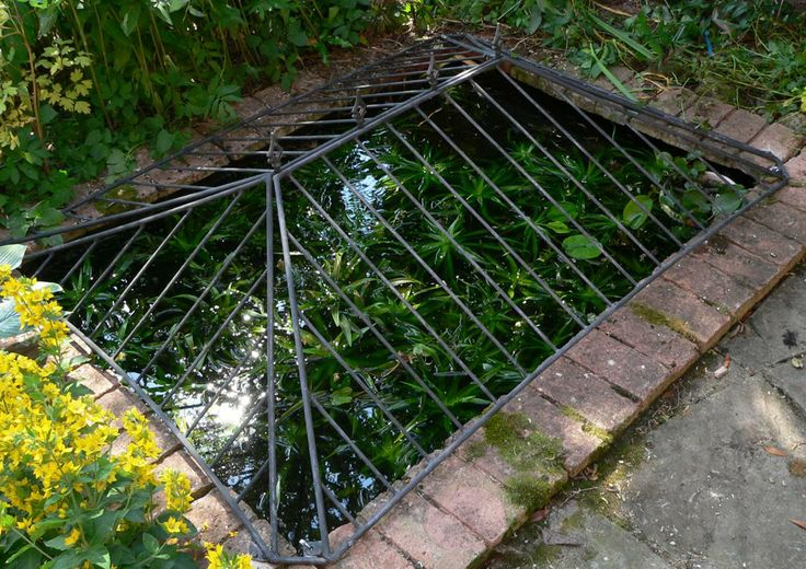 37 best images about ponds water features on pinterest for Decorative fish pond covers