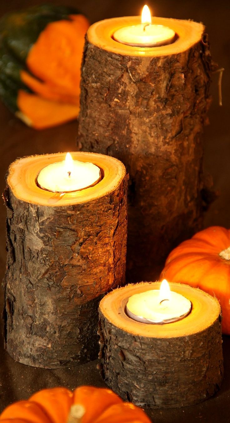 Best 25 log candle holders ideas on pinterest for Log candles diy
