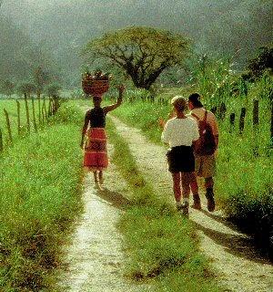 Jamaican Road