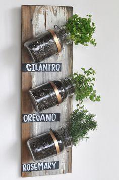DIY herbario en casa