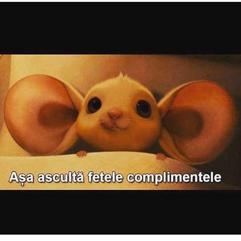 #constanta #funny #photo #pietonu #citate #followme #bucuresti #music #love #rap #hiphop #mesaje #food #dogs #messages #cluj #sarcasm #viral #internet #timisoara #brasov  #instagood #beautiful #poze #ploiesti #tags #friends #dope #swag #constanta  #medgidia