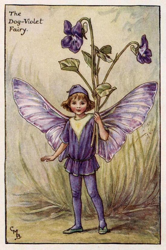 Hond-Violet Flower Fairy Vintage Print, c.1927 Cicely Mary Barker-boekillustratie plaat