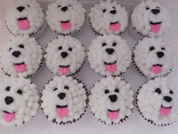 Bichon cupcakes!