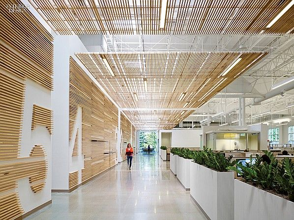 Newell Rubbermaid Design Incubator by Eva Maddox | Projects | Interior Design  Slats as ceiling and lighting strips, graphic design in walls