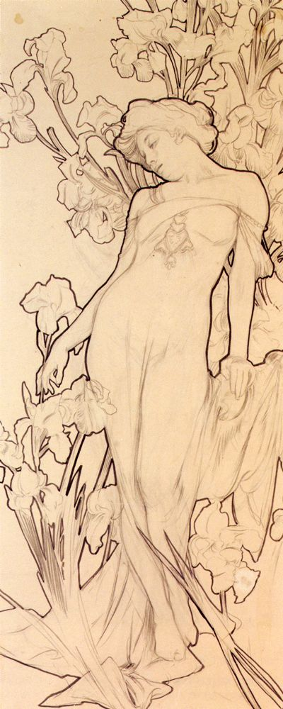 Iris (pencil with ink wash), Alfons Marie Mucha