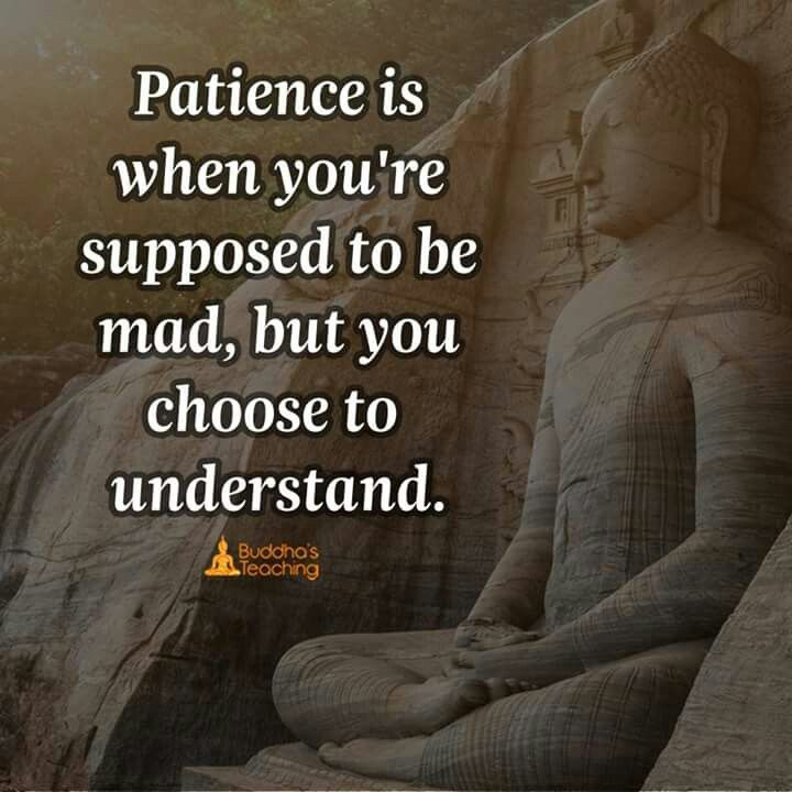 Patience I Never Thought I Would Have 10 Years Of Jail I Have All The Patience Of A Saint Buddha Quote Buddhist Quotes Positive Quotes
