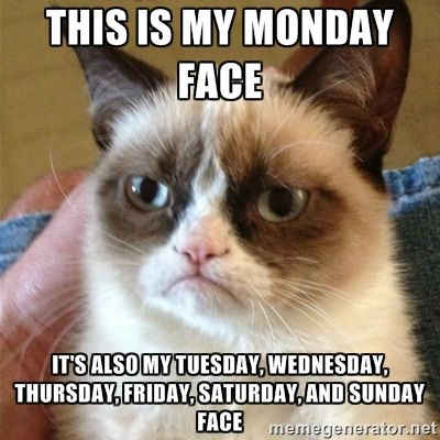 Grumpy Cat  - This is my Monday face It's also my Tuesday, Wednesday, Thursday, Friday, Saturday, and Sunday face