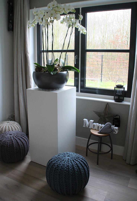 grote pot met orideeën op zuil