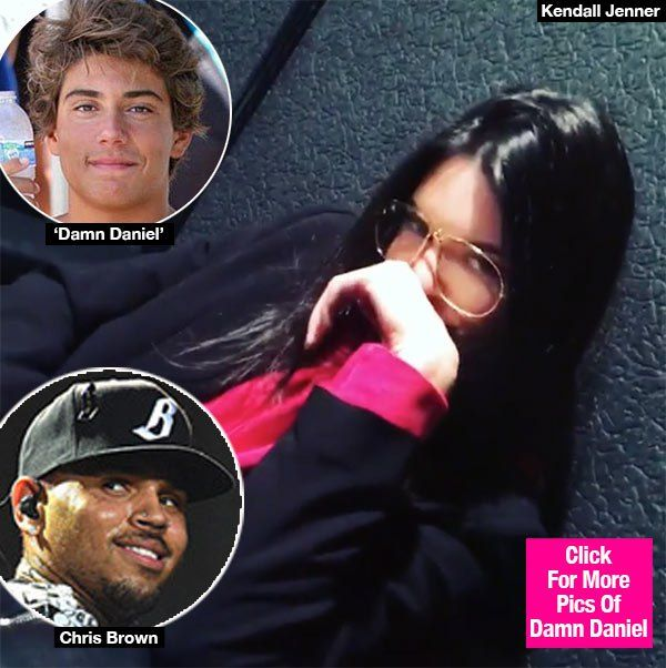 Damn, Daniel! Even Chris Brown and Kendall Jenner are hopping on the viral Vine train, posting their own version of the meme to Instagram! Click through to watch their hilarious vid!
