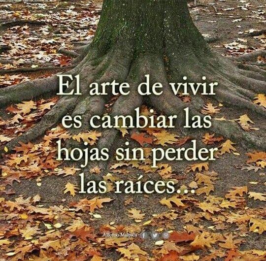 El arte de vivir, no perder nuestras raíces.