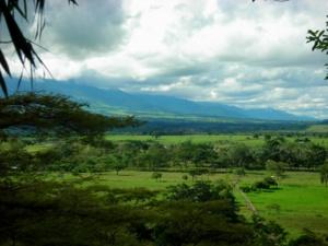Resultados de la Búsqueda de imágenes de Google de http://upload.wikimedia.org/wikipedia/commons/thumb/9/92/Los_Llanos_Colombia_by_David.png/300px-Los_Llanos_Colombia_by_David.png