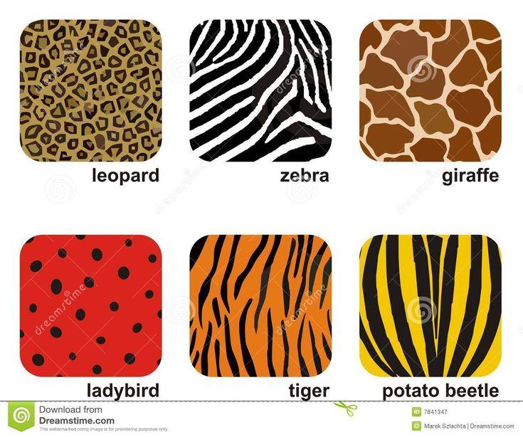 animal-prints-7841347.jpg (1300×1086)