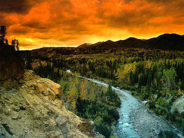 Denali National Park   Alaska