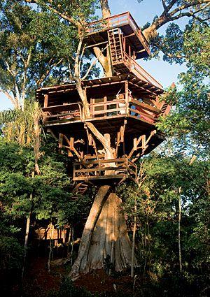 Porecatu Treehouse A large extended family uses the Porecatu Treehouse as a weekend retreat.