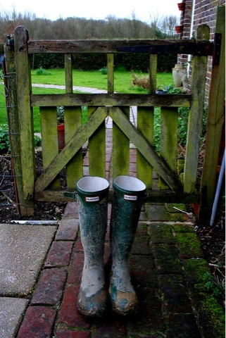 Nothing like a good old pair of Wellies.........