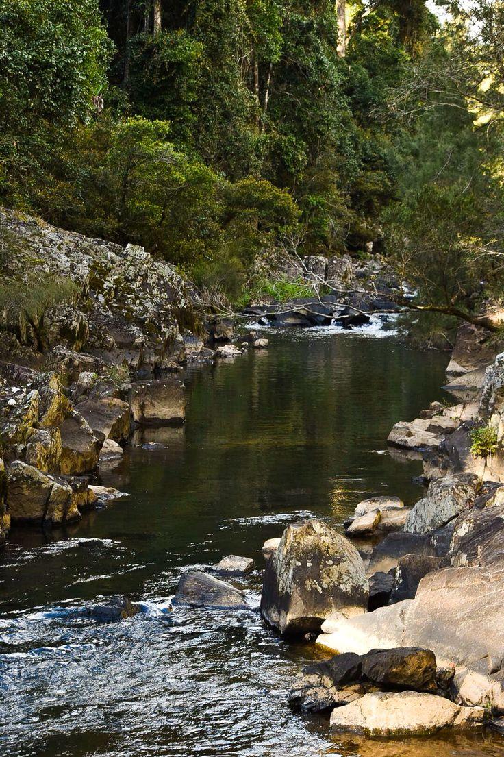 Nature, Broken River, Eungella National Park