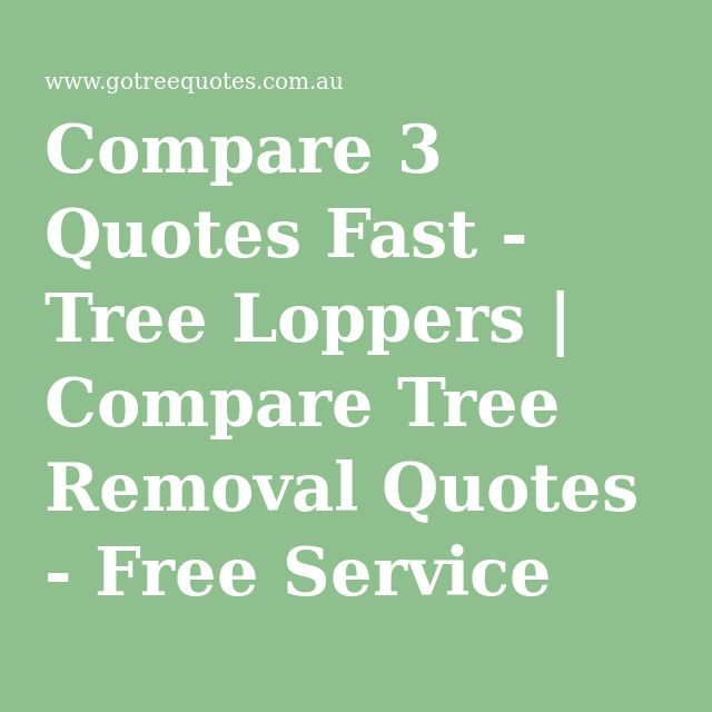 Compare 3 Quotes Fast - Tree Loppers | Compare Tree Removal Quotes - Free Service