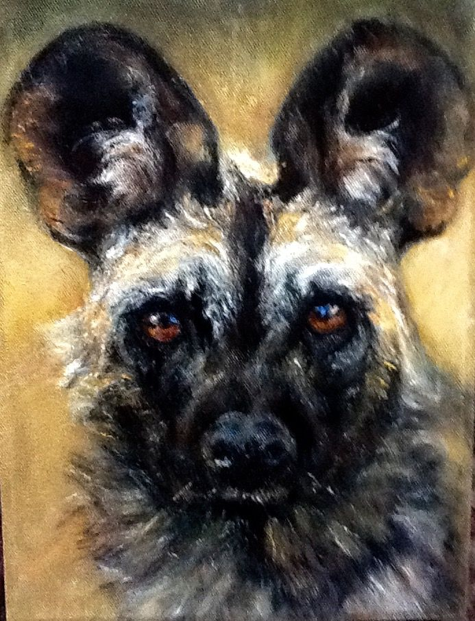African wild dog Jean Weir ( oil)
