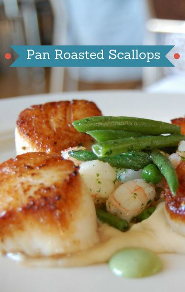 "On ""The Chew"" Michael Symon showed viewers just how easy it can be to prepare an elegant meal using simple ingredients. His Pan-Roasted Scallops are practically fool-proof!"
