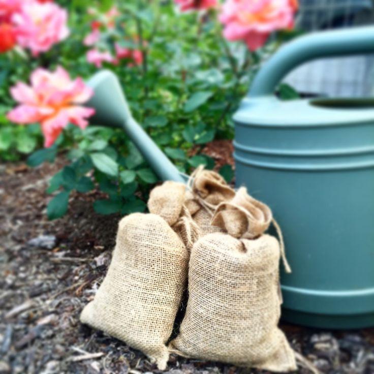 13 best sweet manure tea images on Pinterest | Compost tea ...