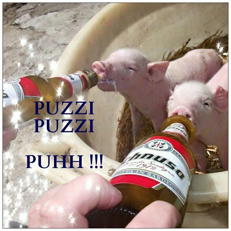 Puzzi puzzi -o - Putzi putzi  (Puhh) letteralmente : che schifo (ironico in questo caso, visto che i maialetti da latte,adorano la birra ) Ichnusa  seguru !!