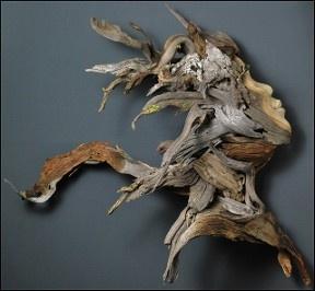 sculpture art wood - Google Search