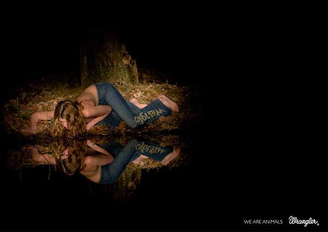 wrangler-we-are-animals-reflection-2.jpg (650×460)