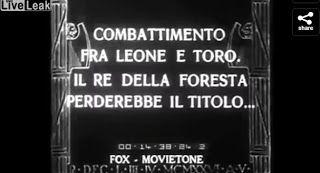 """""""O Grito do Bicho"""": Filme antigo mostra numa arena o combate de um leã..."""