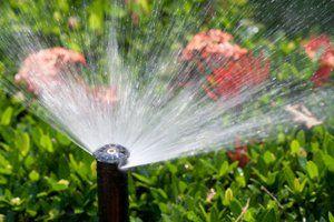 Install a Sprinkler System-cost