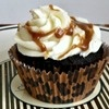 Kentucky Derby Pie Cupcakes: Place Your Bets on Chocolate, Walnuts, and Bourbon ~ Cupcake Project