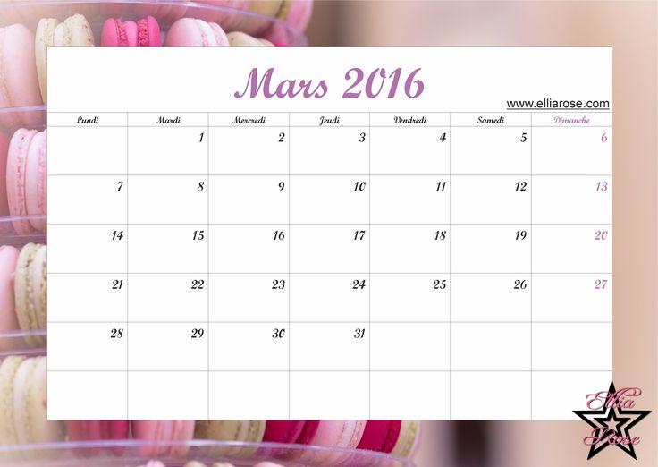 Pour être organisé tout au long de cette année 2016, voici un calendrier gratuit à imprimer sur le thème macaron sans calorie ;) www.elliarose.com