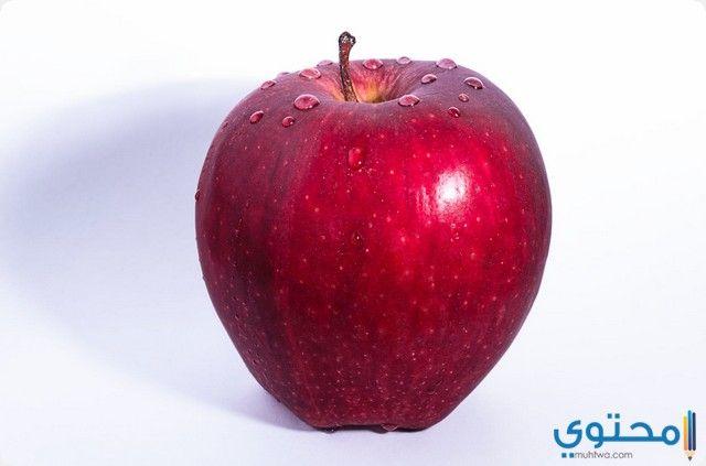 التفاح في المنام Healthy Bedtime Snacks Healthy Protein Snacks Red Delicious Apples