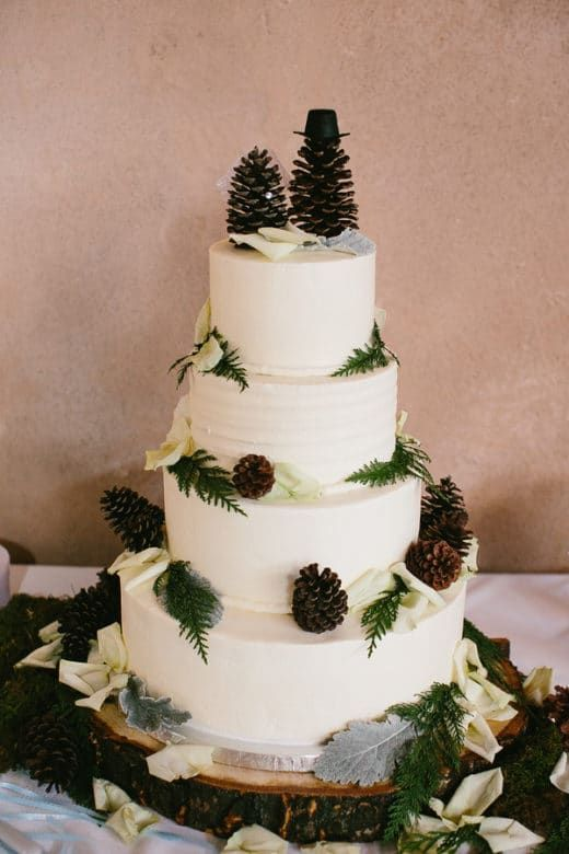 10 Pinecone Wedding Cakes You Will Pine For Rustic Wedding Cakes