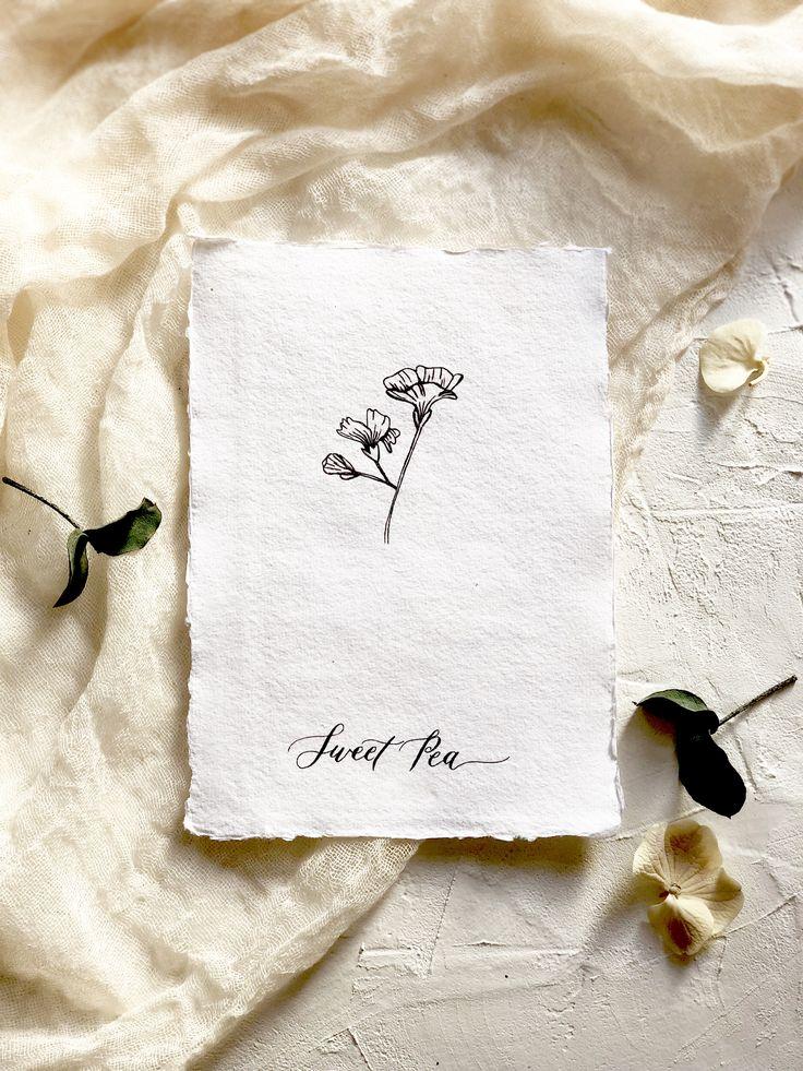 Botanical illustration art print.  Modern florals. Sweet pea- the flower of bliss