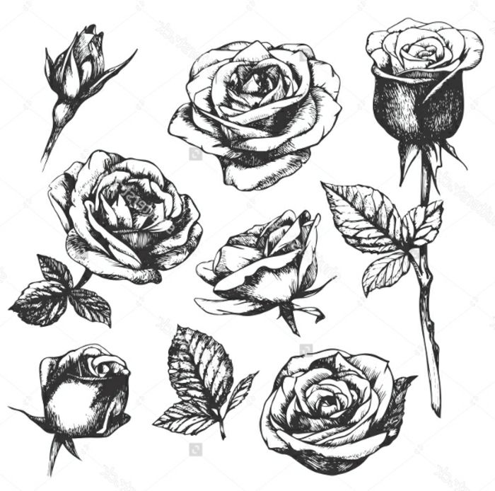 Cicek Desenleri Ile Ilgili Gorsel Sonucu Flores Vectorizadas Flores Simples Siluetas Flores