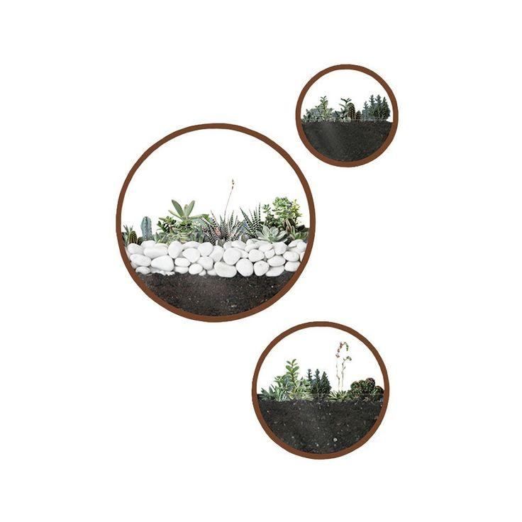 Best m round wall hanging plant terrarium iron