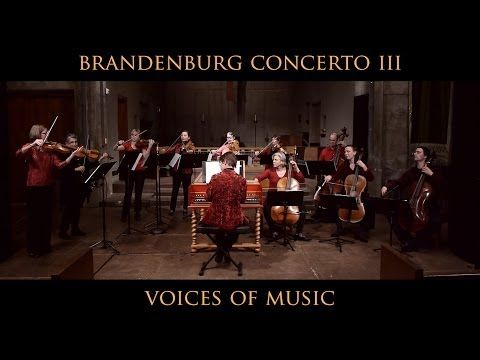 brandenburg concerto no 5 first movement analysis Bwv 1050 - brandenburg concerto no5 (scrolling) gerubach amazing how could pinnock play 6:03 without destroying his fingers i am absolutely awestruck every time i listen to the harpsichord cadenza in the first movement and think of the technique and it must be years of practise to play that.