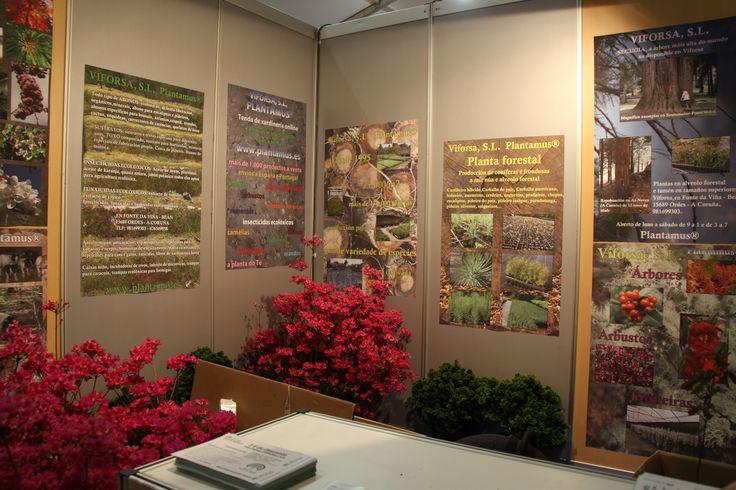 Asistencia a ExpoOrdes 2.013 www.plantamus.es
