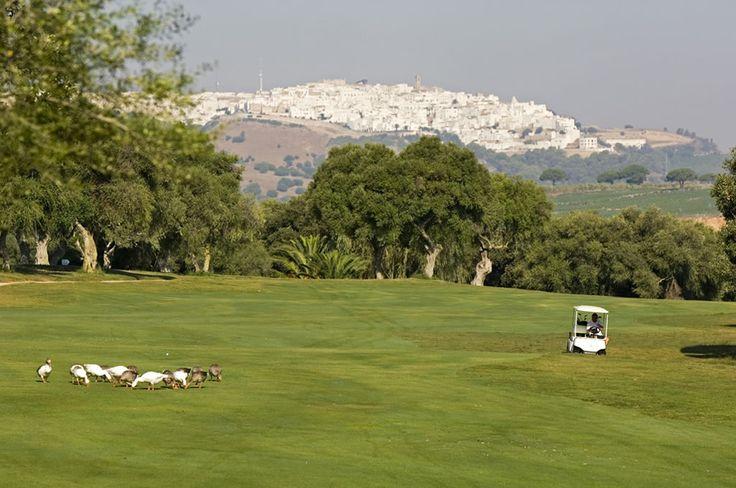 http://golfandcountrytravel.nl/golf-landen/spanje/la-cala-resort-spanje-costa-del-sol/#