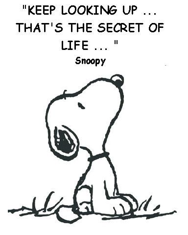 Keep looking up…that's the secret of life.    ~ Snoopy