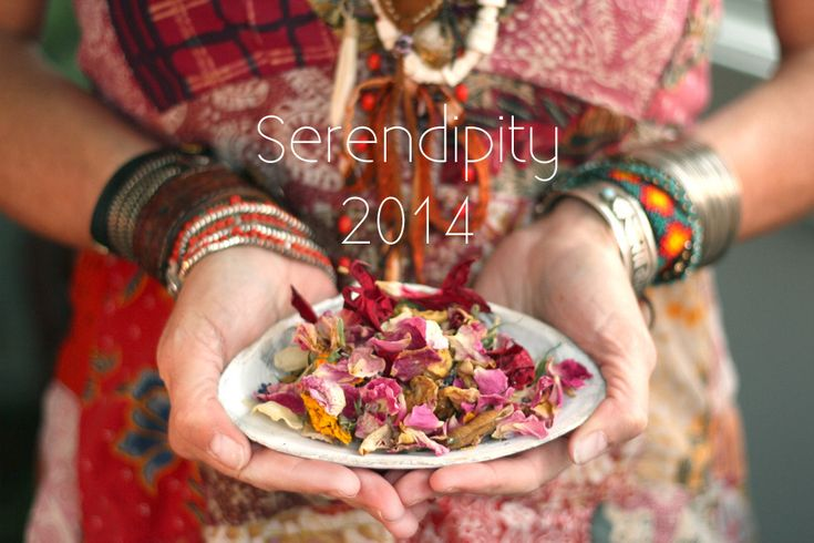 Registation for Serendipity 2014 is now open  Come join us by the sea....  http://animyst.com/serendipity-2014/