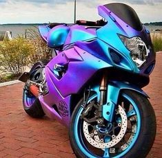 Born Free Choppers II Motorcycle T Shirts – Kathy T. Nugent ll Biker