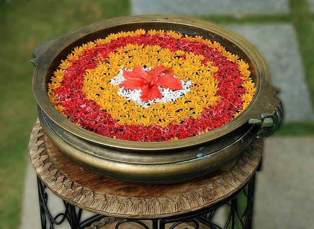 Water Bowl Decoration 325 Best Diwali & Rangoli Images On Pinterest  Diwali Rangoli