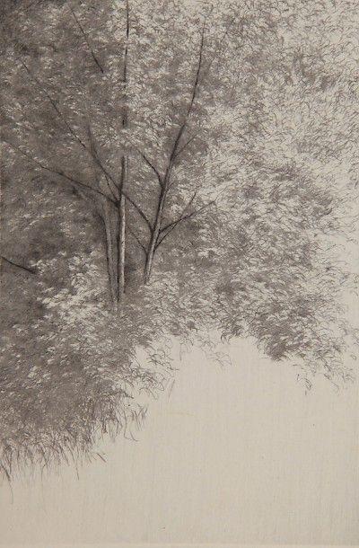 Shigeki Tomura : Nature, Summer VIII at Davidson Galleries