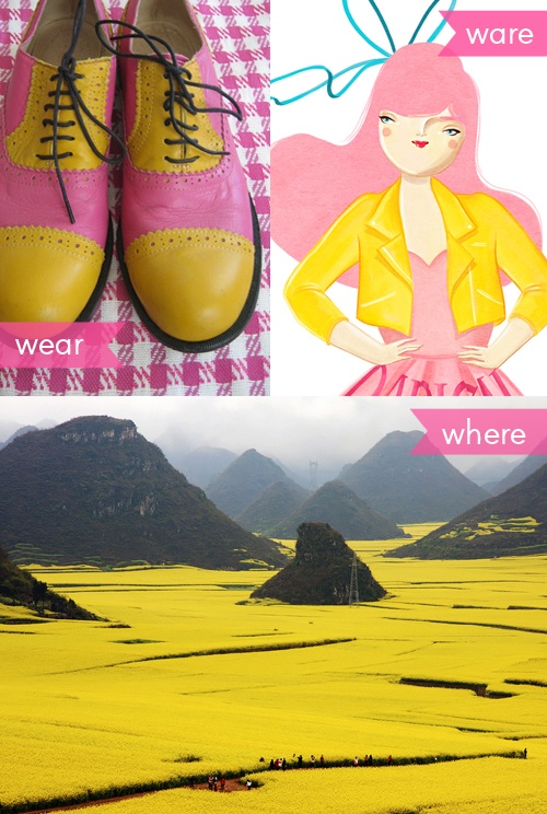 i love love love, pink and yellow combos! blogged.: Wear Ware, Flower Fields, Yellow Combos, Canola Flower