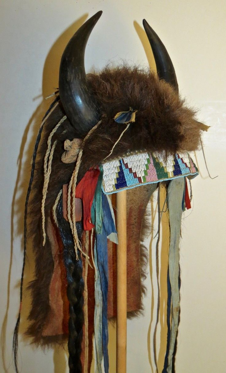 Replica buffalo horn headdress | Native american headdress ...
