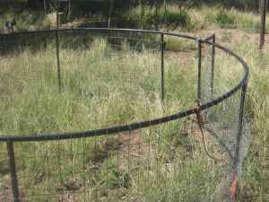 how to build a dog pen out of wood