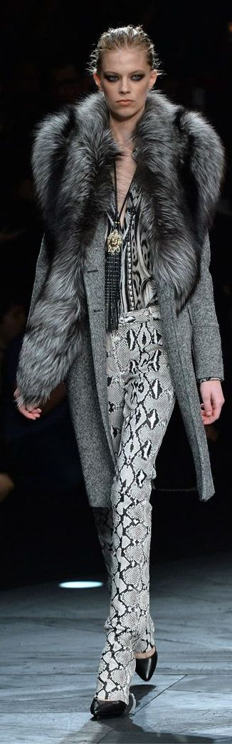 Roberto Cavalli Fall/Winter 2014-2015
